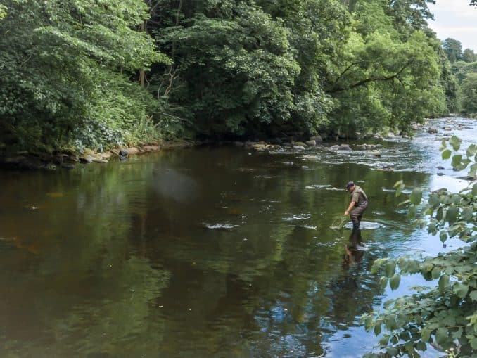 river almond fishing
