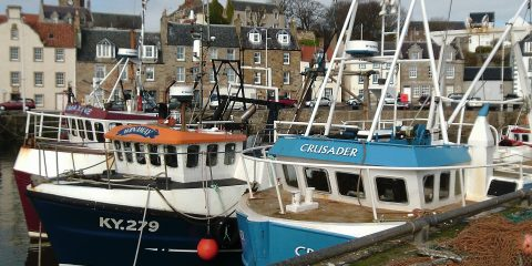 pittenweem-harbour