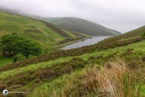 Loganlea reservoir from Scald Law