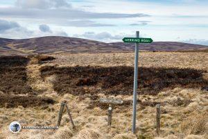 The Herring Road