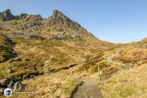 Decision time at The Cobbler