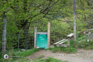 Special dog gate
