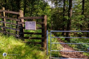 Entrance to the woodland