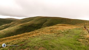 The summit of Ben Cleuch