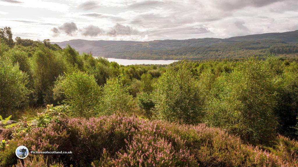Loch Venachar from Lendrick Hill