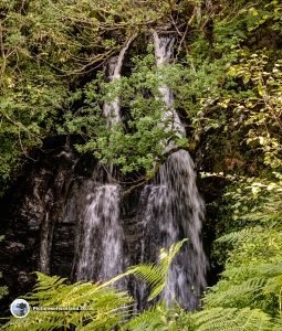 Waterfall at Lendrick Hill