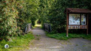 Start of the Lendrick Hill Walk