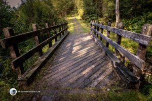 Bridge on the Lendrick Hill path