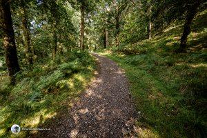 Path up Lendrick Hill