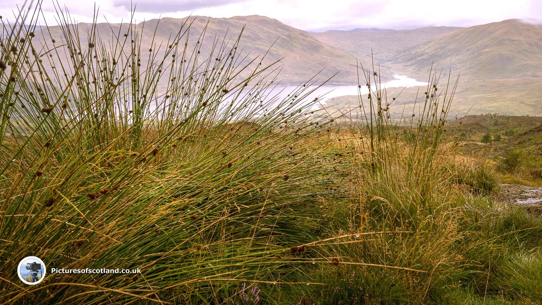 Glenfinglas Reservoir seen from The Stuc Odhar Walk
