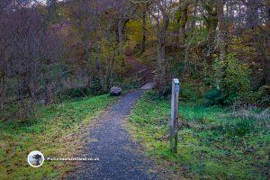 Little Druim Wood Play Trail